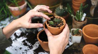 5 Gift Ideas for Gardeners